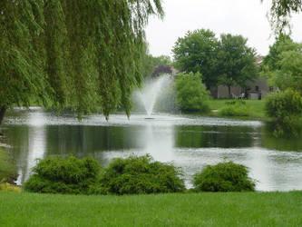 The Hidden Pond 6