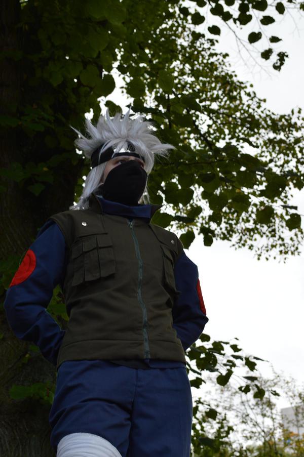 Kakaoshi's Profile Picture