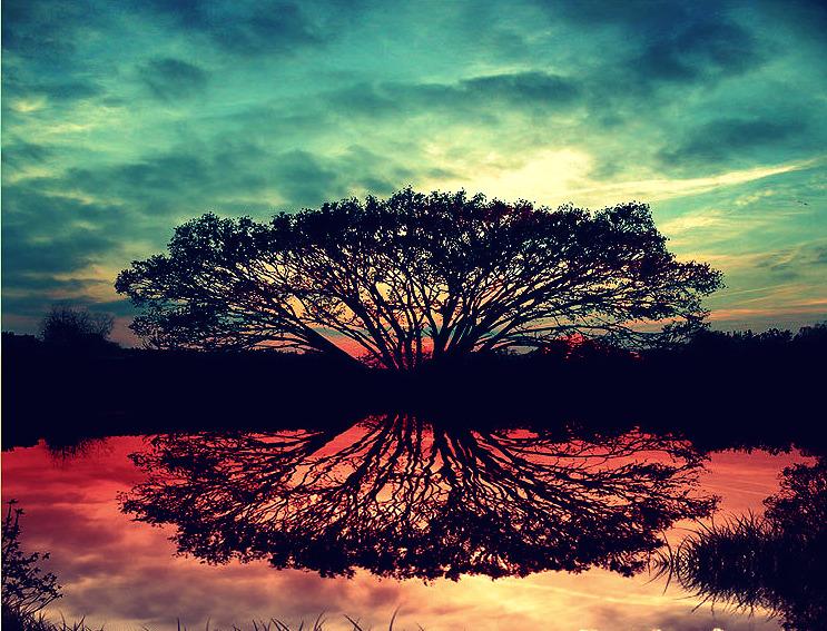 Magic Watered Mirror by RavenGocean