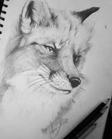 Fox graphite portrait  by Magan1996