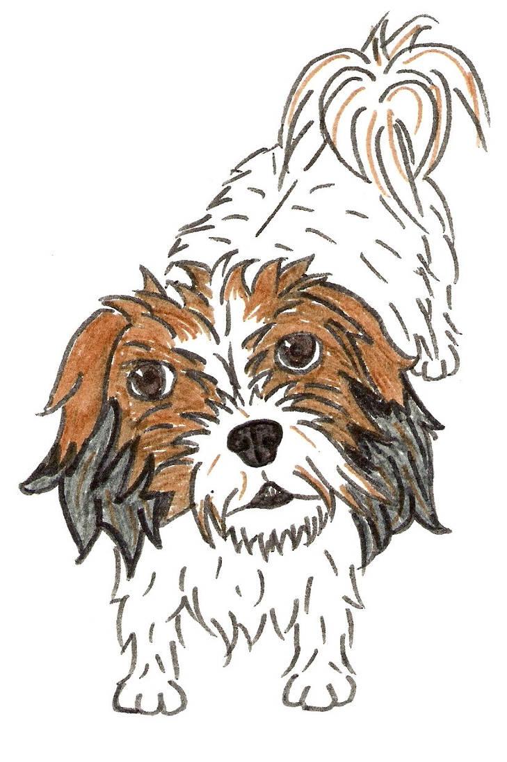 Pen Drawing Number 1 - Judi