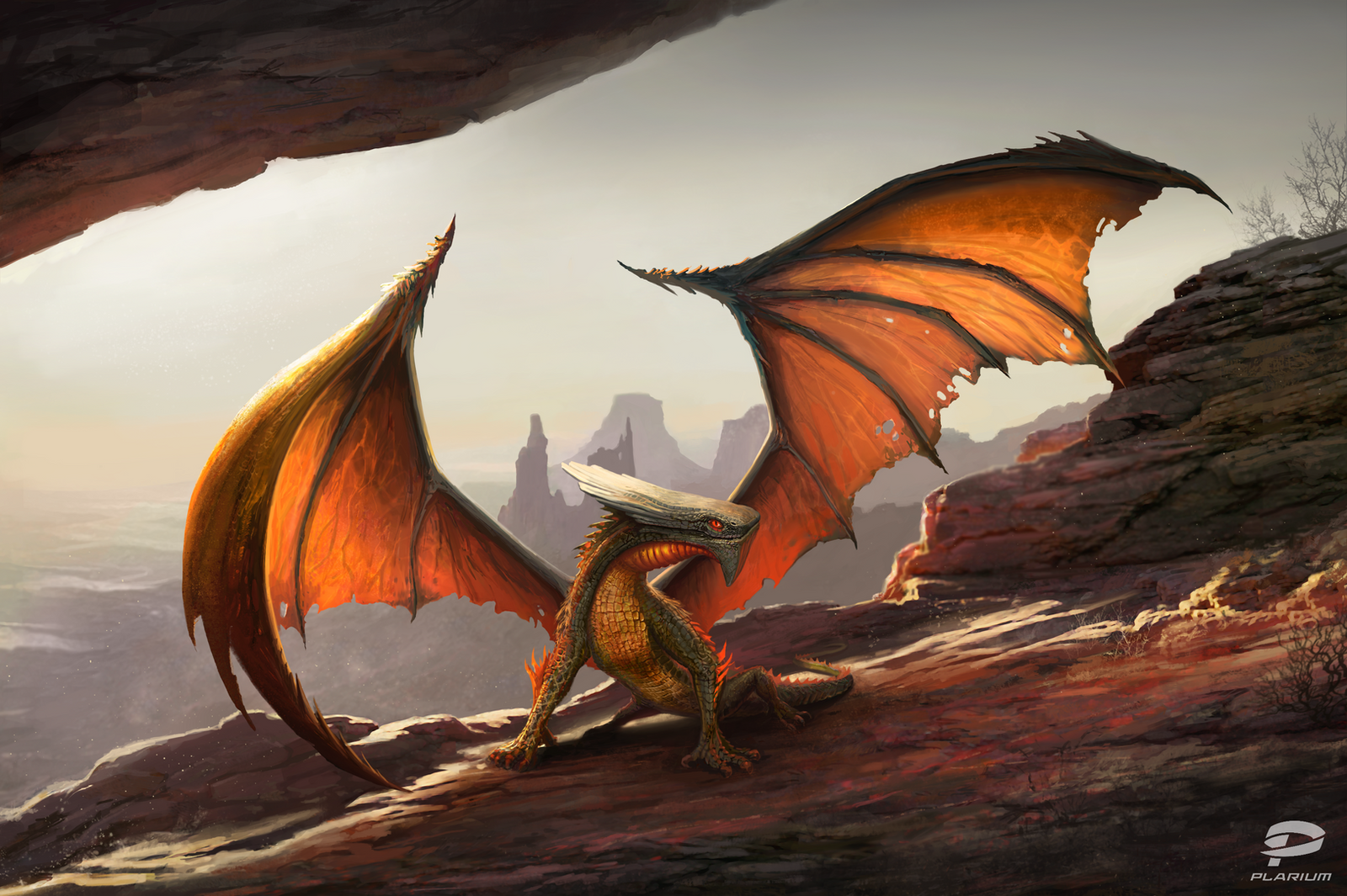 Canyon Dragon by OtherDistortion