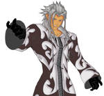 xemnas color