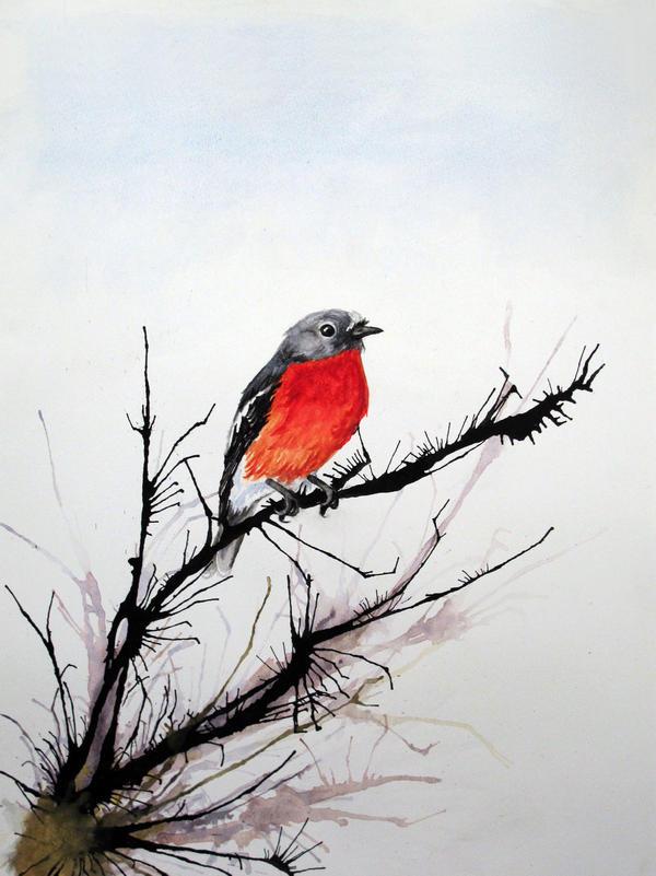 Flame Robin by Maromanko