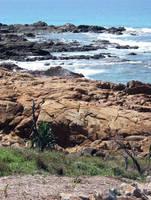 On the Rocks by cityrose