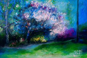 Cherry Tree by Keltu