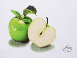 Drawing Fruits 2 - Green Apple - Colored pencils by f-a-d-i-l