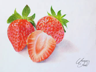 Drawing Fruits 3 - Strawberries - Colored pencils by f-a-d-i-l