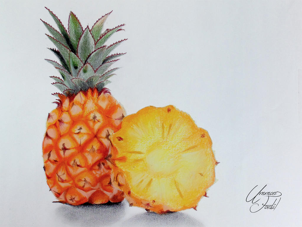 Drawing Fruits 4 Pineapple Colored Pencils By F A D I L On Deviantart