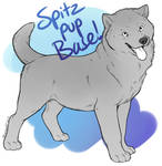 Spitz Pup Base [For Sale for POINTS/USD]