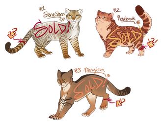 Cat Adoptables [AUCTION - CLOSED] by Machati