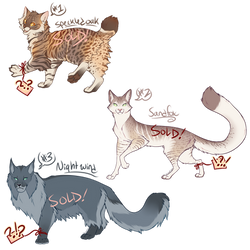 Cat Adoptables 8 [AUCTION - CLOSED] by Machati