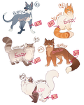 Cat Adoptables 9 [SOLD]