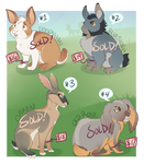 Rabbit Adoptables [SOLD]