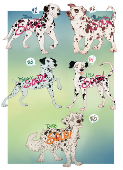 Dalmatian Adoptables Challenge 21 - 25 [SOLD]
