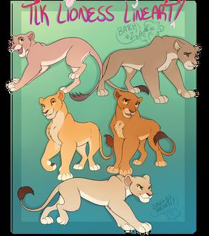 TLK Lioness Lines 2 [P2U]