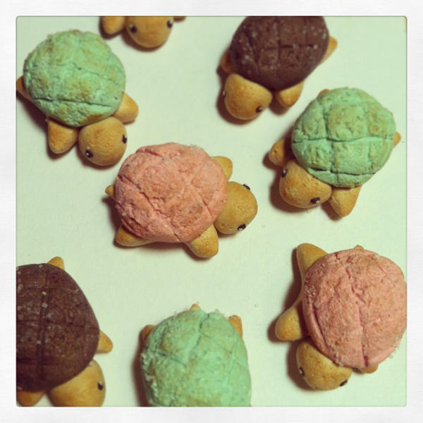 Baked Turtle Bread by rltan888