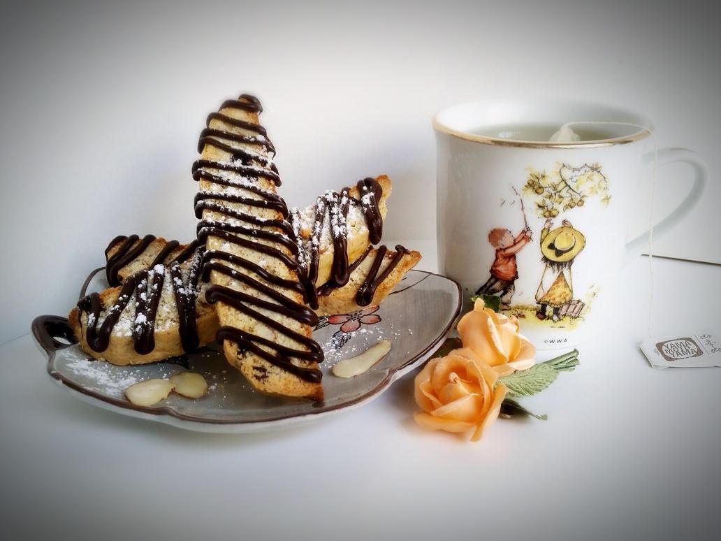 Chocolate Almond Cranberry Biscotti by rltan888