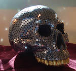 Kingdom of the Aluminum Skull