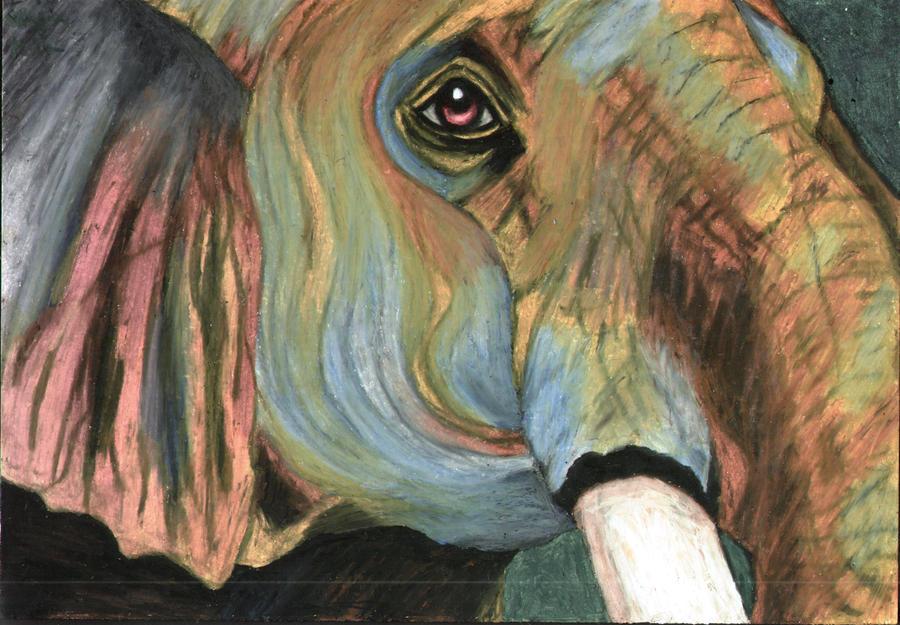 elephant by safija36