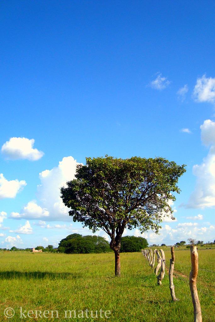 cielo azul by kerenmatute