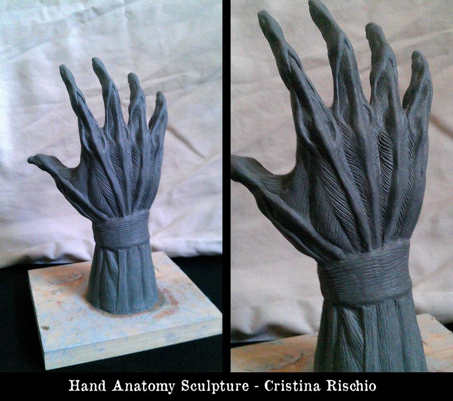 Hand Anatomy Sculpture by Riskyo