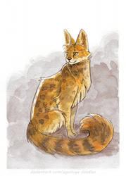 Fluffy Serval