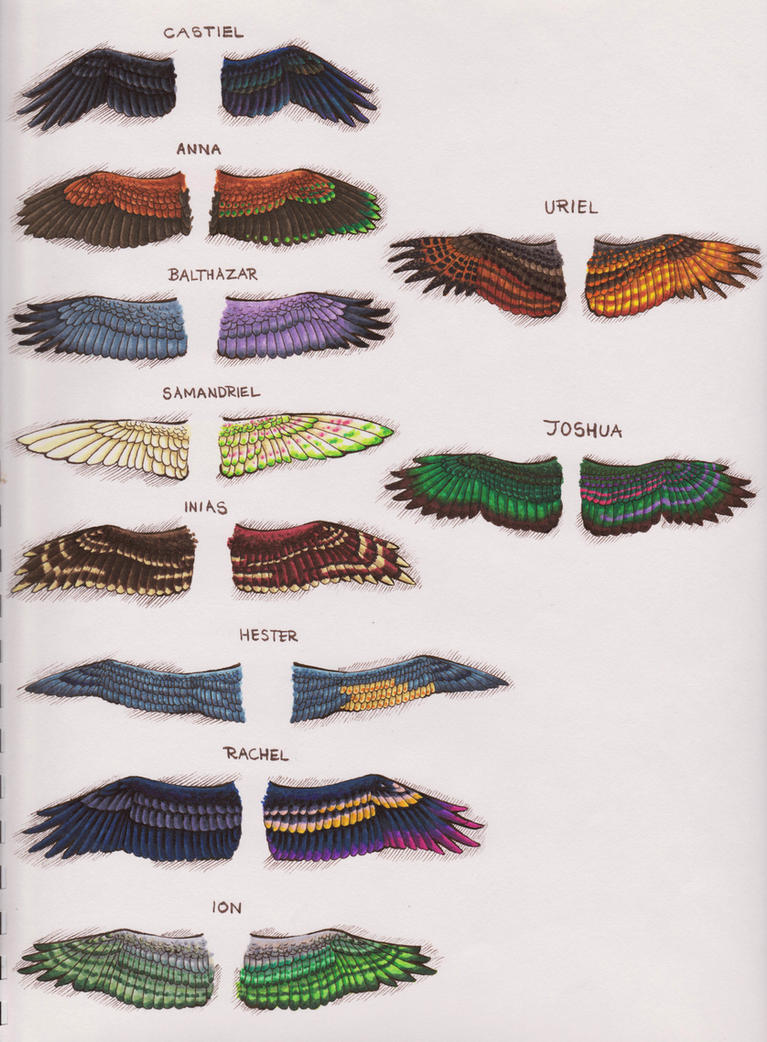 spn angel wing designs    page i by kalasathinee on deviantart