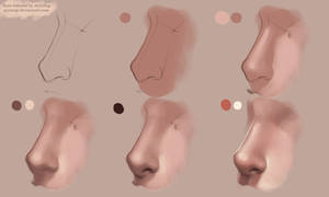Nose Tutorial Photoshop