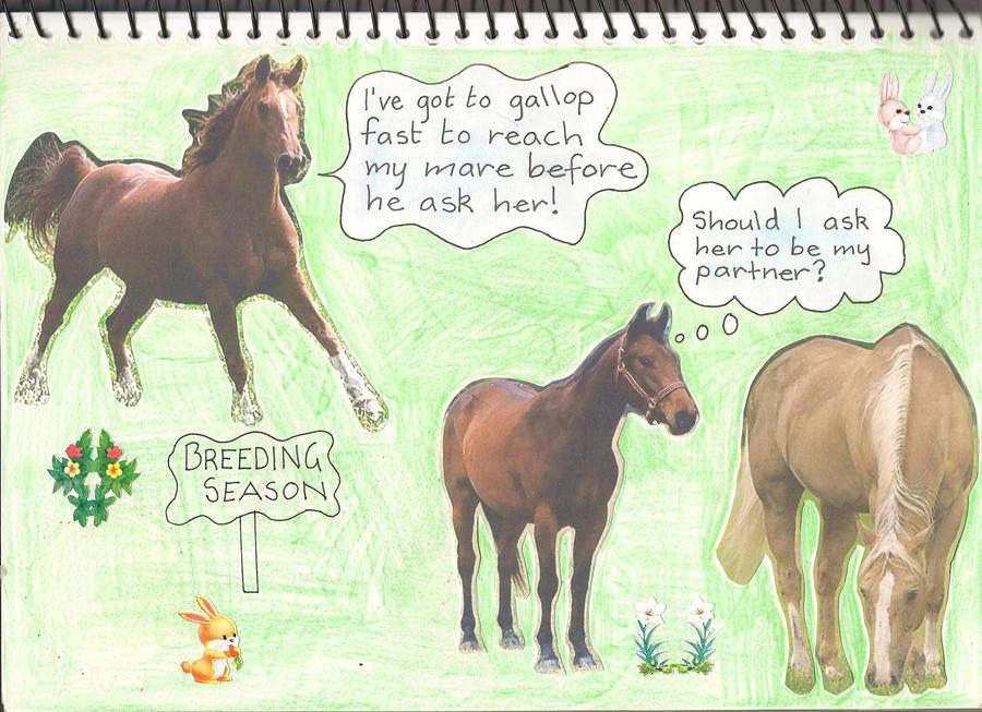 breeding-season-igrat
