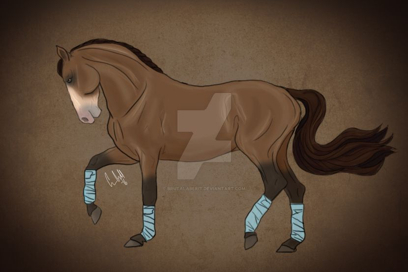 Dressage horse by BrutalaBerit