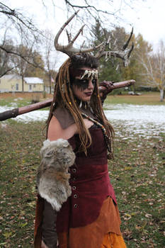 Witch of the Wilds Costume