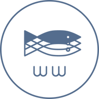 Logo Experiment 3