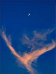 Abstract Sky 8-14-21 #2