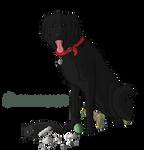 Groverismypuppy ID