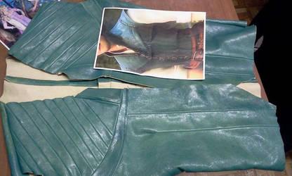 Flynn Rider 's jacket