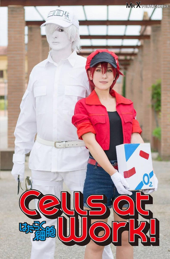 Cells at Work Hataraku saibo by Dariocosplay