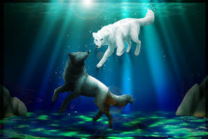 Wolfes in the water by NarmiCreator
