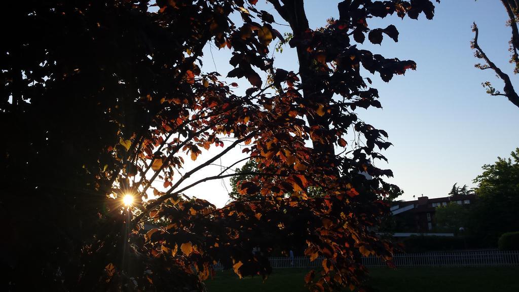 sunset by solstiziodinverno