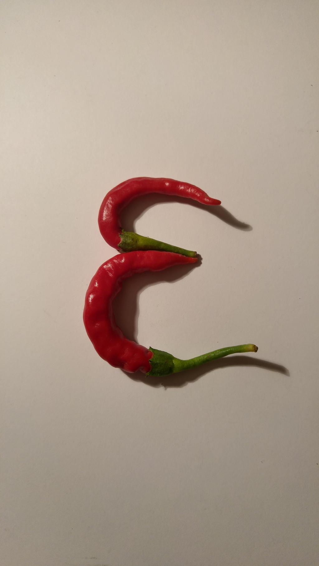 pepper E by solstiziodinverno
