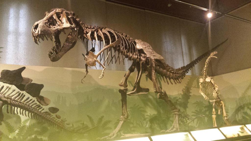 dinosaur 3 by solstiziodinverno