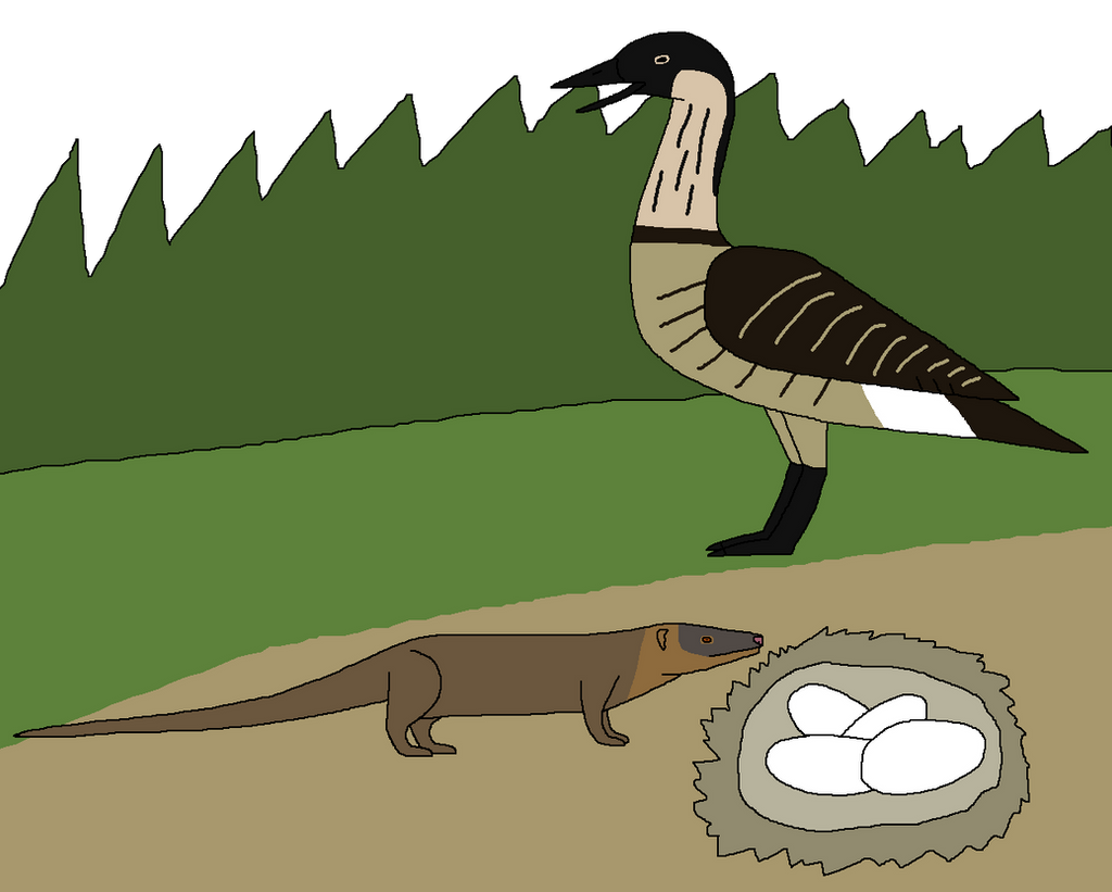 Cooked Goose for Mongoose by WildandNatureFan on DeviantArt