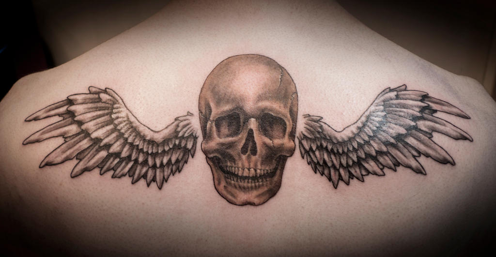 Skull and Wings tattoo by t-o-n-e