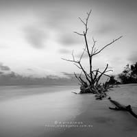End times by warnaiman
