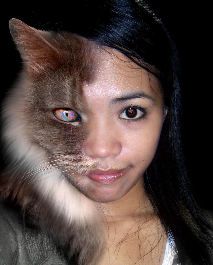 Junicat by valadant