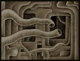 Leech Labyrinth