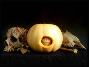 Still Life with Pumpkin by offermoord