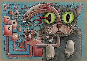 Cat Scratch Fever by offermoord