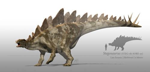 Stegosaurus by sdavis75