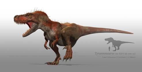 Tyrannosaurus by sdavis75